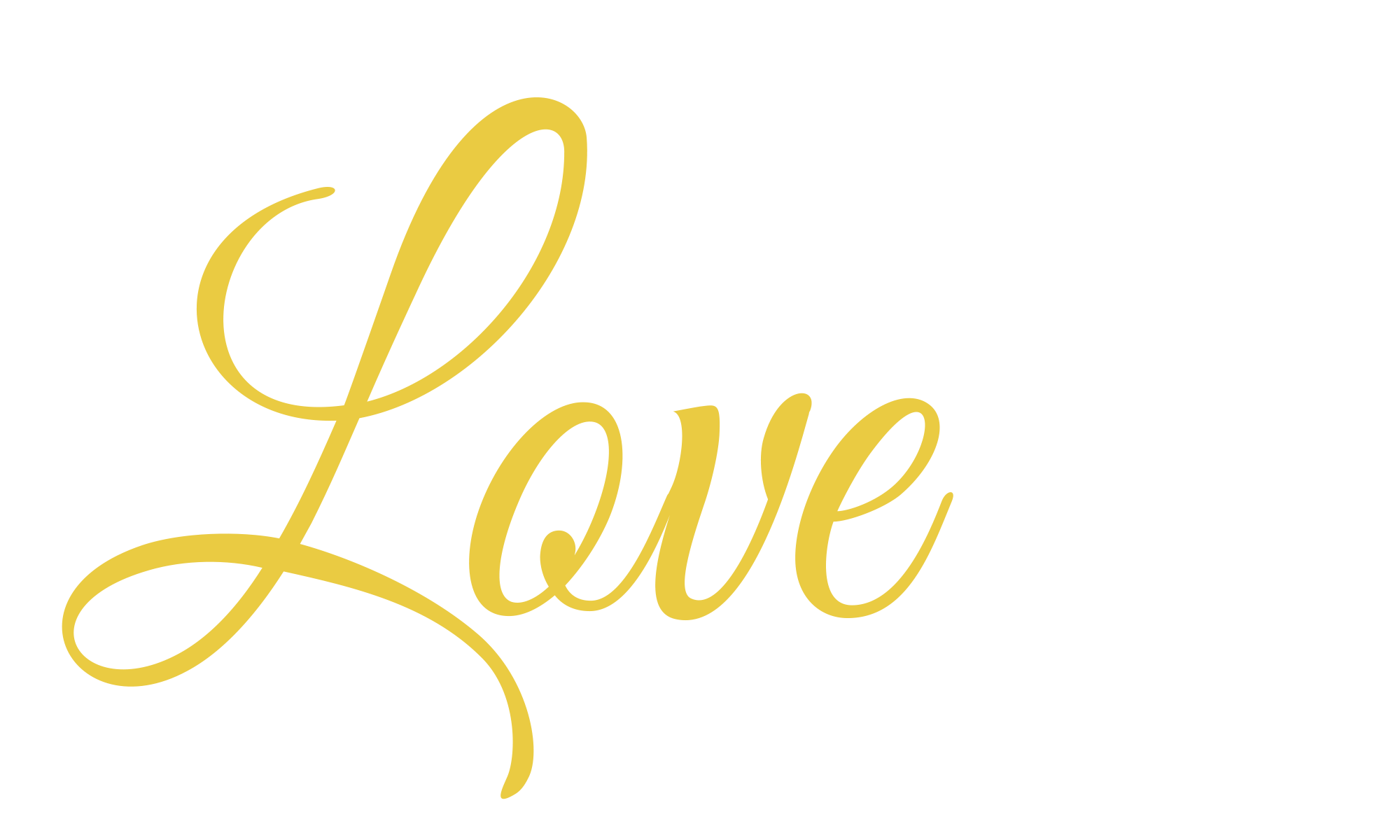 The Love Project Logo